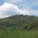 Monte di Montefiorino